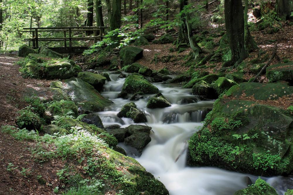 Duitse Nationale Natuurparken
